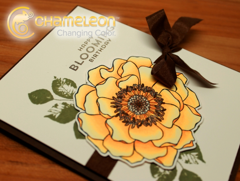 ejemplo-chameleon-scrapbook-ilina-crouse
