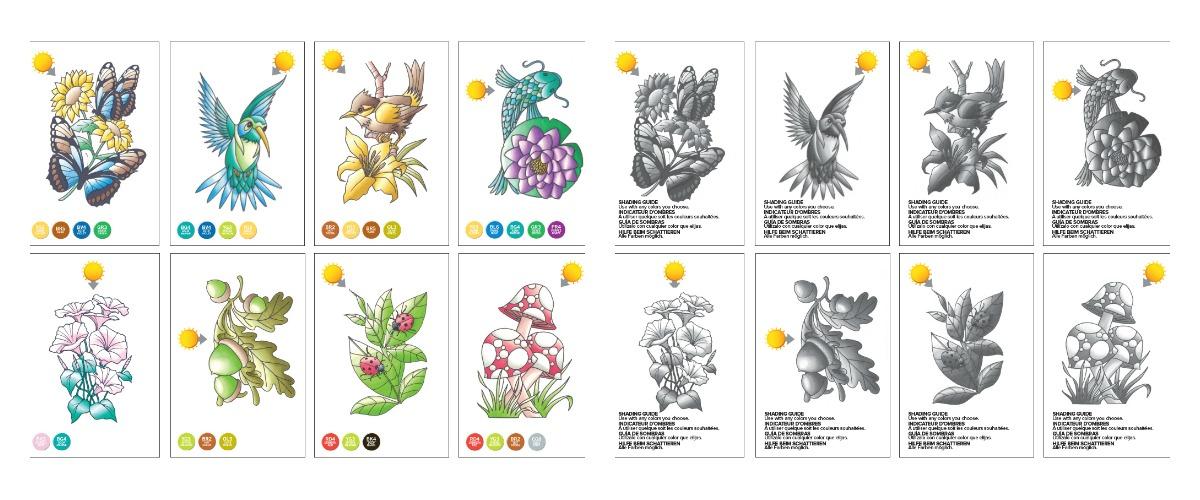 ficha-instruccion-chameleon-color-cards