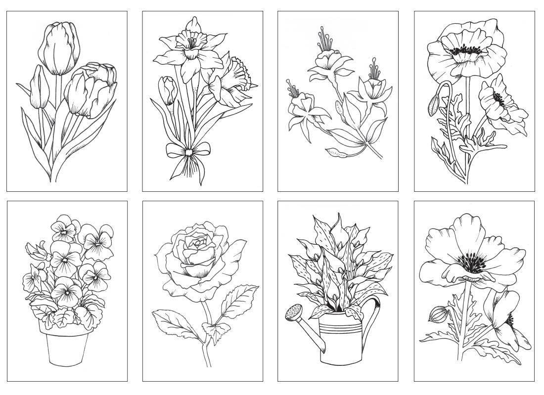 FlowerCards__57193.1446574354.1280.1280